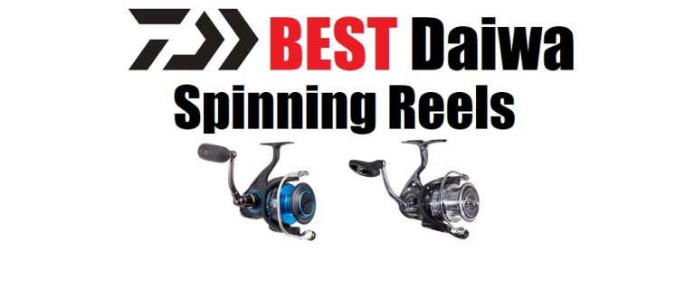 Best Daiwa Spinning Reels – 2021 Buyers Guide