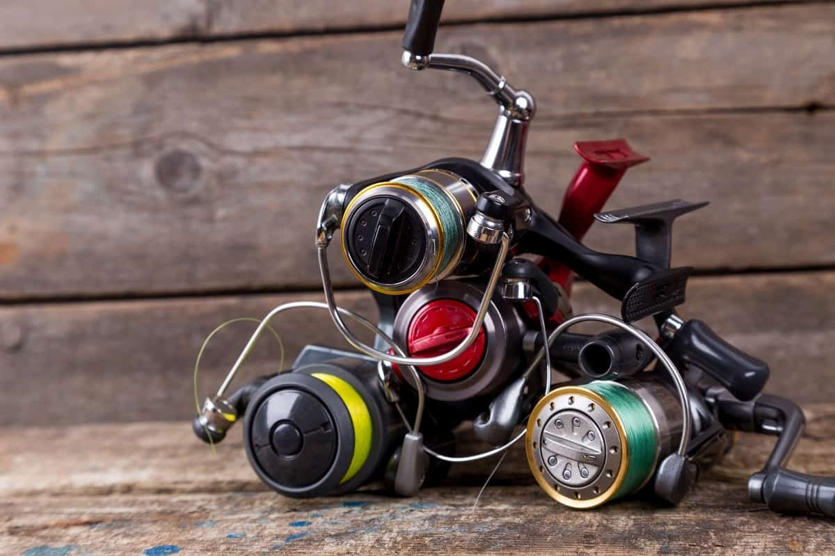 GUIDE – How to Choose the Right Size Spinning Reel | Fishing