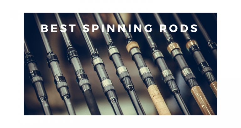Best Spinning Rods – 2021 Buyers Guide
