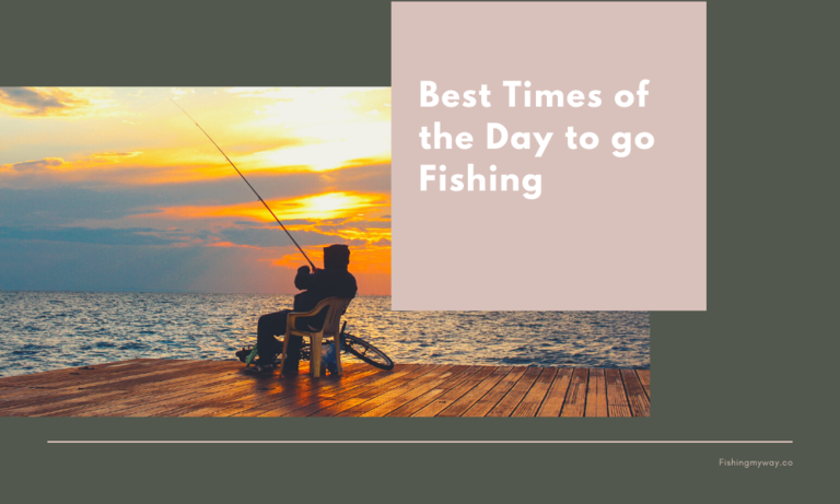 Best Times of the Day to Go Fishing