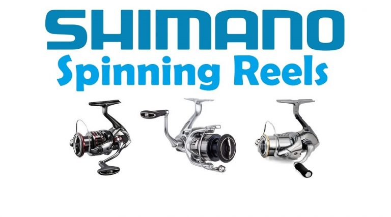 Best Shimano Spinning Reels 2021 – Buyers Guide