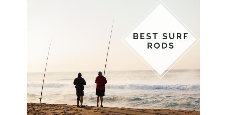 Best Surf Fishing Rods 2021