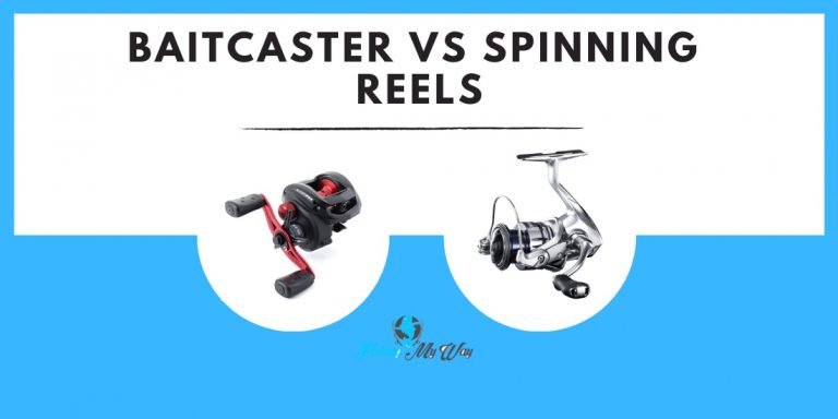 Baitcaster vs Spinning Reel | Should I Get a Baitcaster Reel or a Spinning Reel?