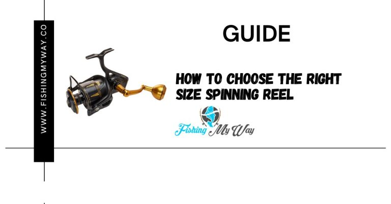 GUIDE – How to Choose the Right Size Spinning Reel