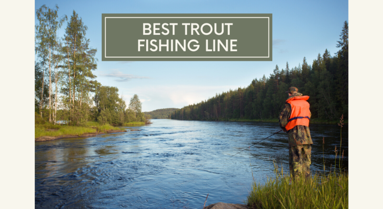 Best Trout Fishing Line