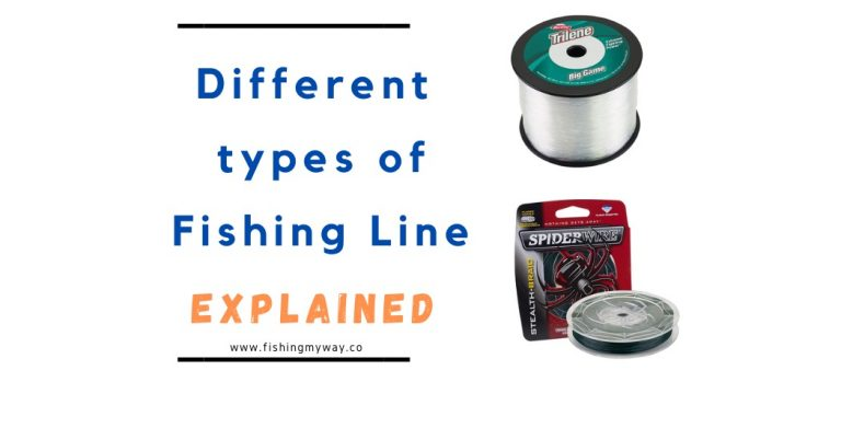 The Different Types of Fishing Line Explained