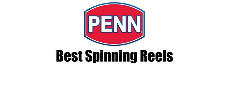 Best Penn Spinning Reels 2021