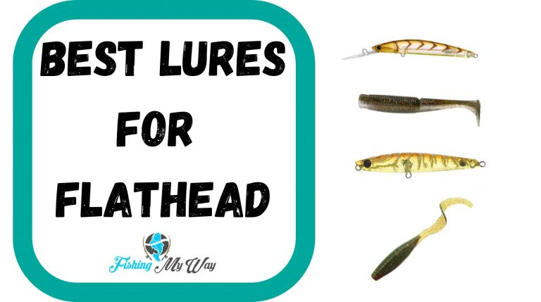 Best Lures for Flathead