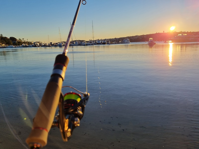 best time of the day to go fishing